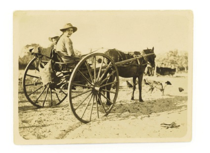Gertie Caporn takes her sister, Alma, in the horse and cart to her first day at school in east Wanneroo in 1924.