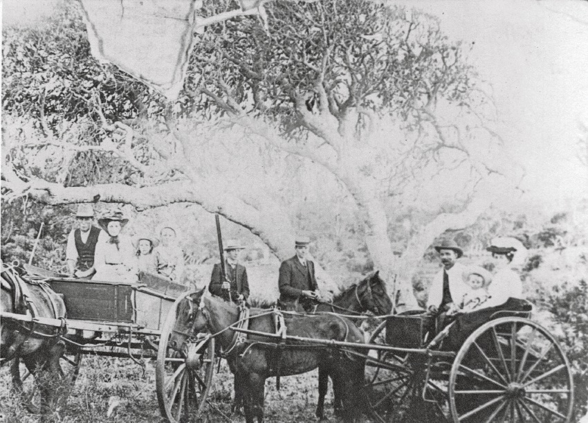 Berriman family and friends on a picnic about 1910. Horses and carts such as these two and those belonging to Mr Spiers, would have had to regularly travel on Wanneroo Road and experience the road's poor condition.