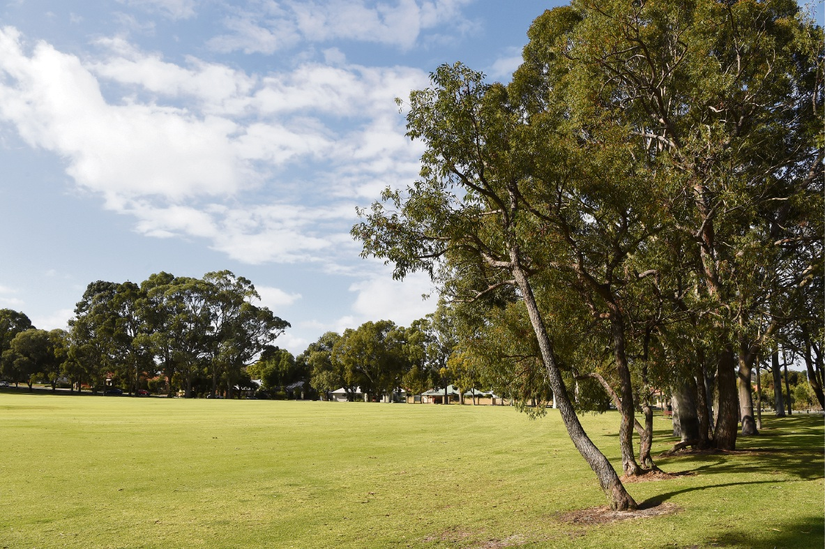 Victoria Park is considering approving a synthetic turf hockey facility at Harold Rossiter Reserve. d471516