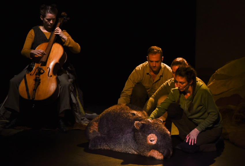 Diary of a Wombat cast with Mothball, Michael Cullen (back, middle).