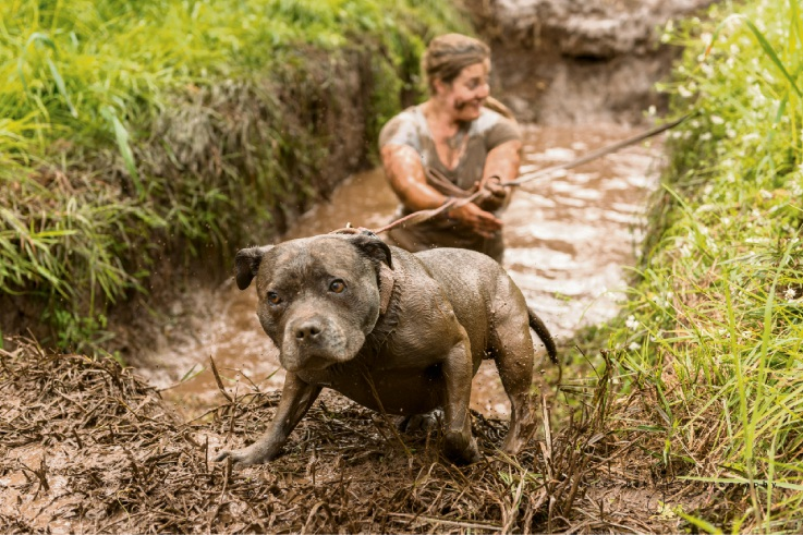 Swan Valley Mudfest bigger, better and dirtier than ever