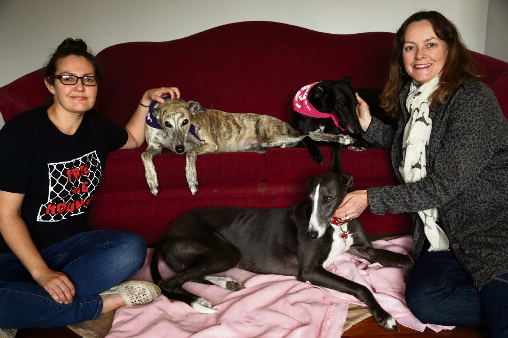 Andrea Pollard with her dogs Misty and Leah and Liz Povah with Boots.  Picture: Martin Kennealey www.communitypix.com.au   d473800