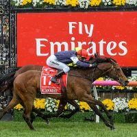 Almandin wins last year's Melbourne Cup. Photo: Getty