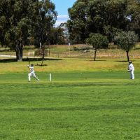 Cricket: mixed weekend for Kwinana teams