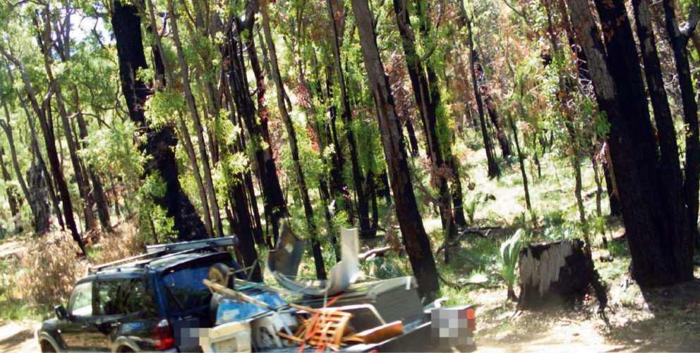 Hefty fines for illegal dumping in State Forest