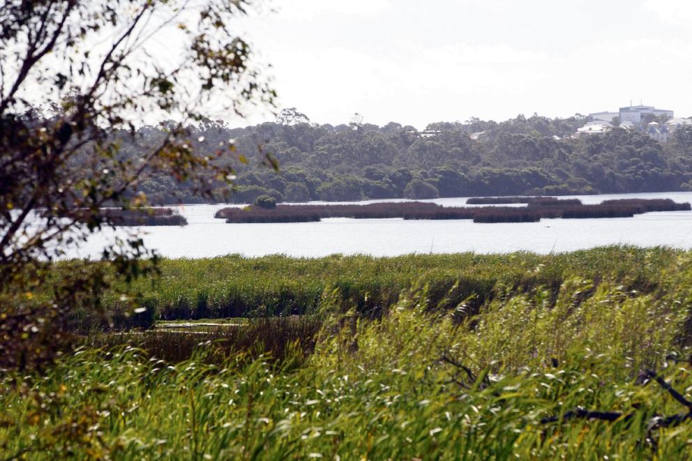 Yellagonga Regional Park. Picture: Bruce Hunt.