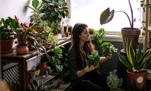 Lifestyle photos of a young adult woman watering her indoor plant garden.