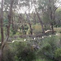 Trees Adventure plans to open treetop courses in Yanchep National Park. Picture: Trees Adventure/Facebook