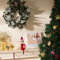 The Elf on the Shelf is coming to Perth thanks to Westfield shopping centres.