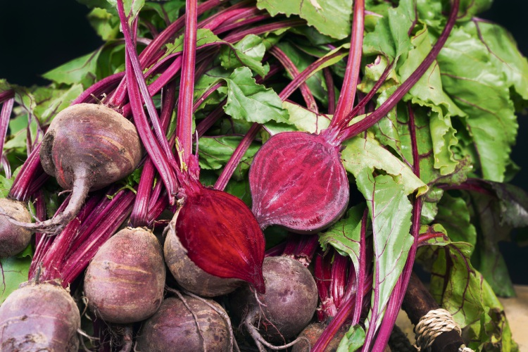 Plant beetroot in winter.