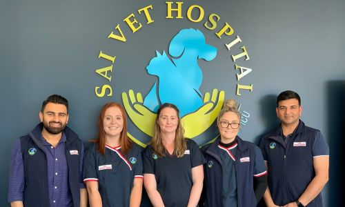 The SAI Veterinary Hospital team. Picture: Anton La Macchia