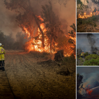 The bushfire has been contained. Pictures: DFES