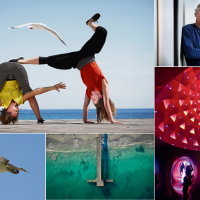2019 in pictures. Photography: Andrew Ritchie and David Baylis