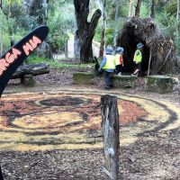 Children enrolled at Goodstart early learning centres explore Yanchep National Park. Pictures supplied