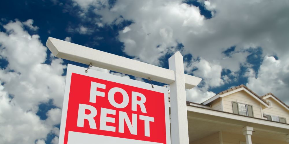 Reiwa says more needs to be done to protect tenants and landlords.