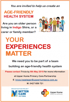 Age-friendly health system flyer