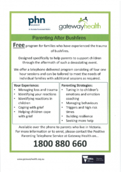 Parenting After Bushfires flyer