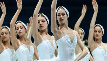 Swan Lake show page banner
