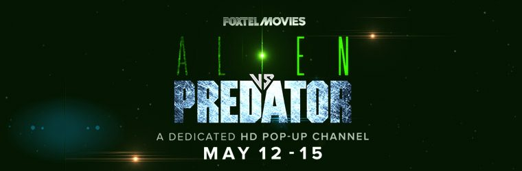 Alien vs Predator Pop-Up
