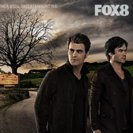 The Vampire Diaries Final Season