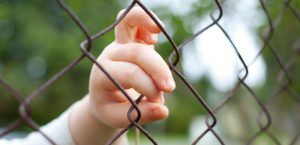 BabiesBehindBars_Article_Image_Desktop