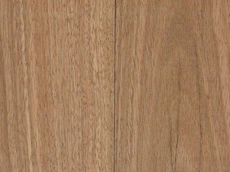 Spotted Gum Wide Board Natural Wire Brushed