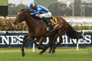 Picture of race horse: Imposing Lass