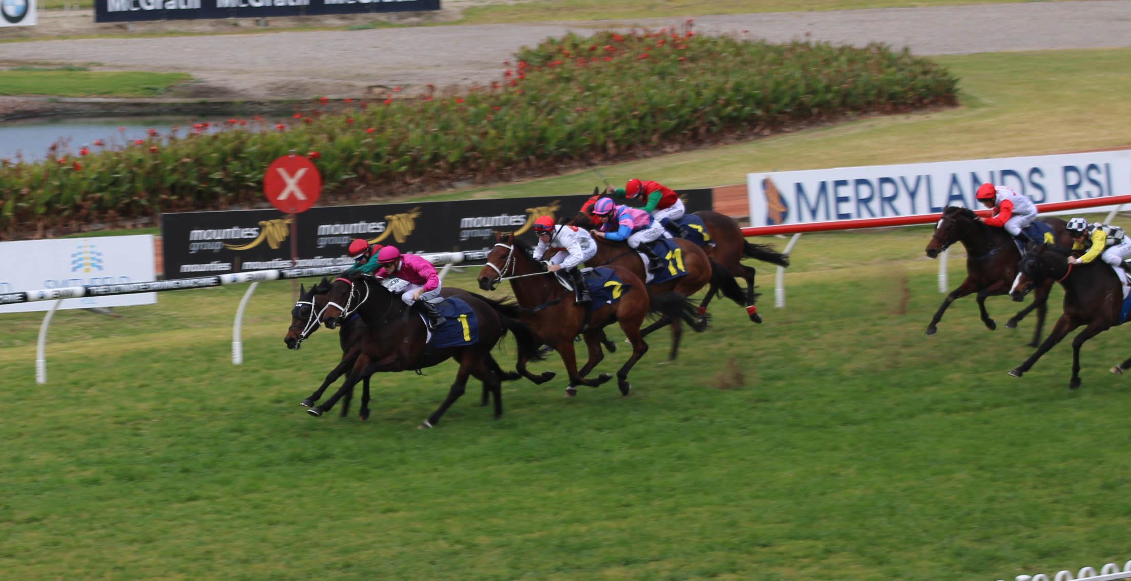 Flemington Rsl Club Race For Article