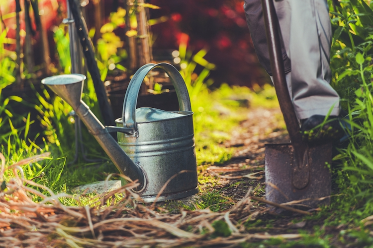 hashching_How_much_does_landscape_gardening_cost