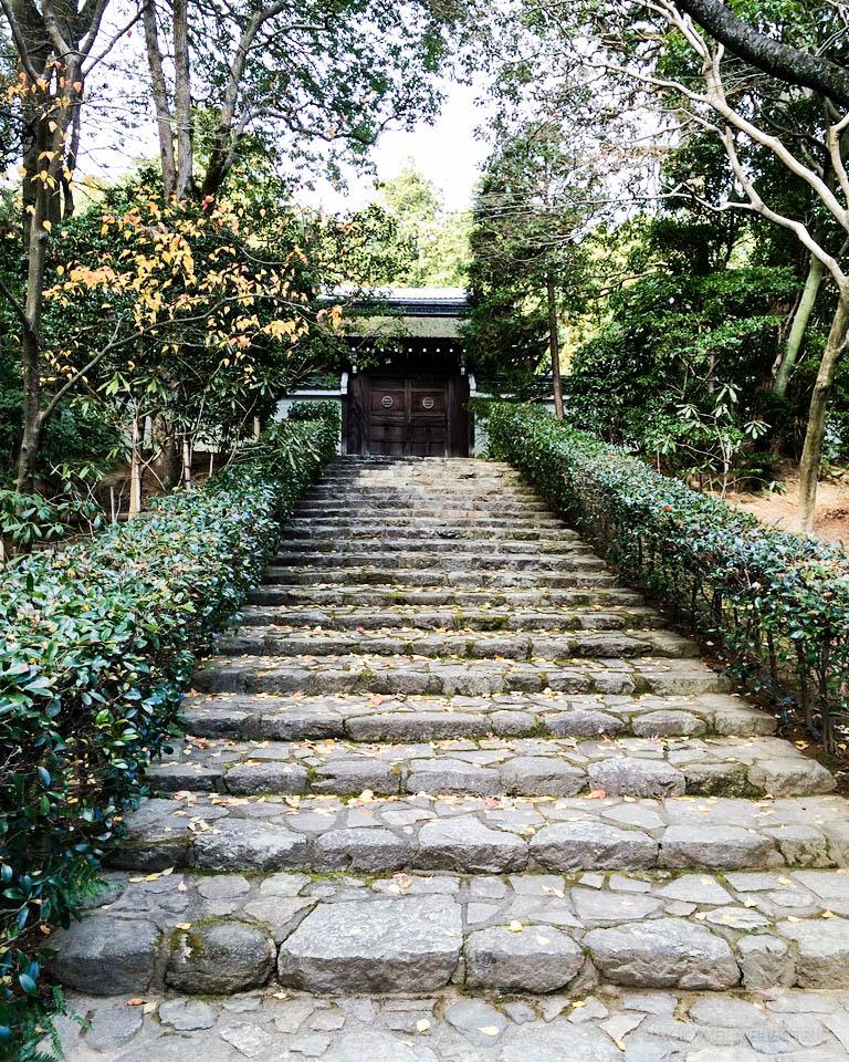 jwe-japans-golden-pavilion-2