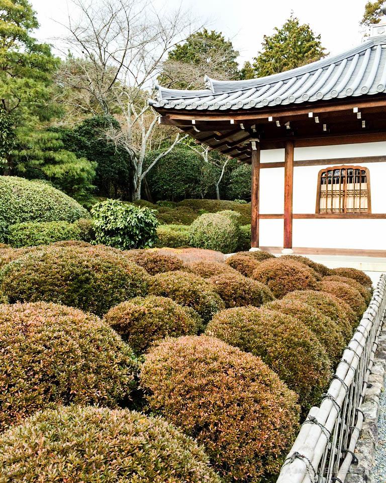 jwe-japans-golden-pavilion-1