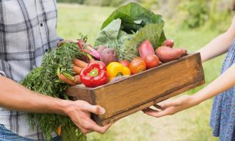 Organic food is not healthier