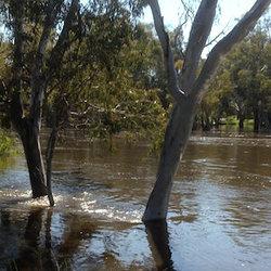 Kolety flood oct2016 sq300