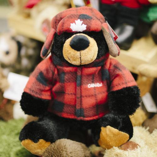 Black bear in Canada the cuddly kind
