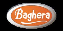 BRAND_BAGHERA_LOGO