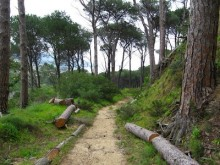 TRAVEL_CapeTown_TheGlen_CampsBay_credit_WalkingtheCape