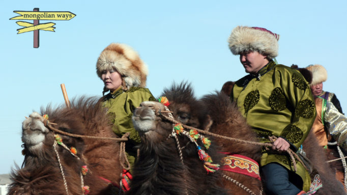 Camel Breeders
