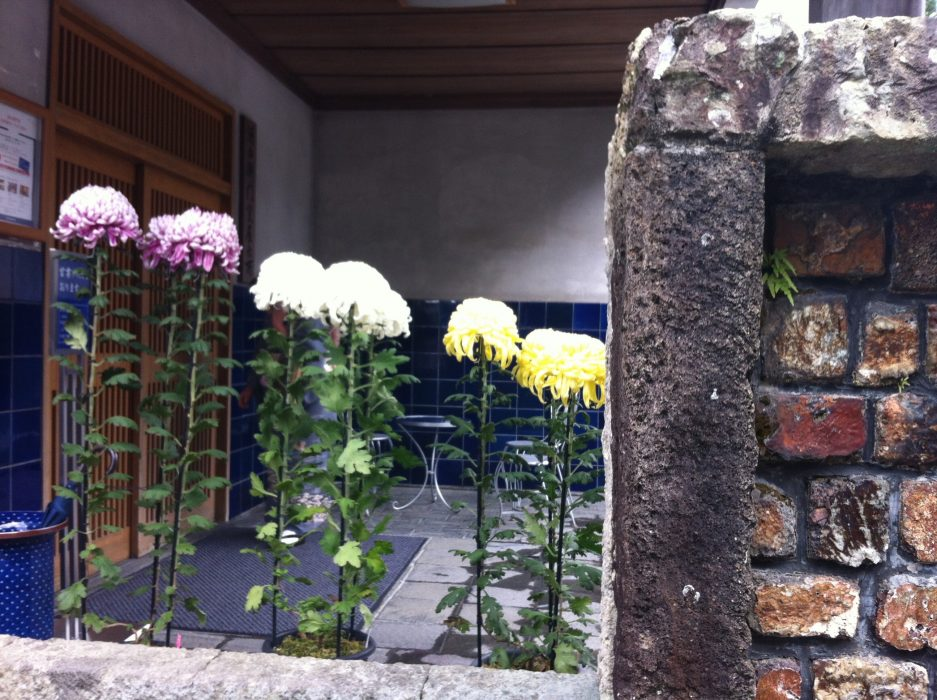 Arita Flowers