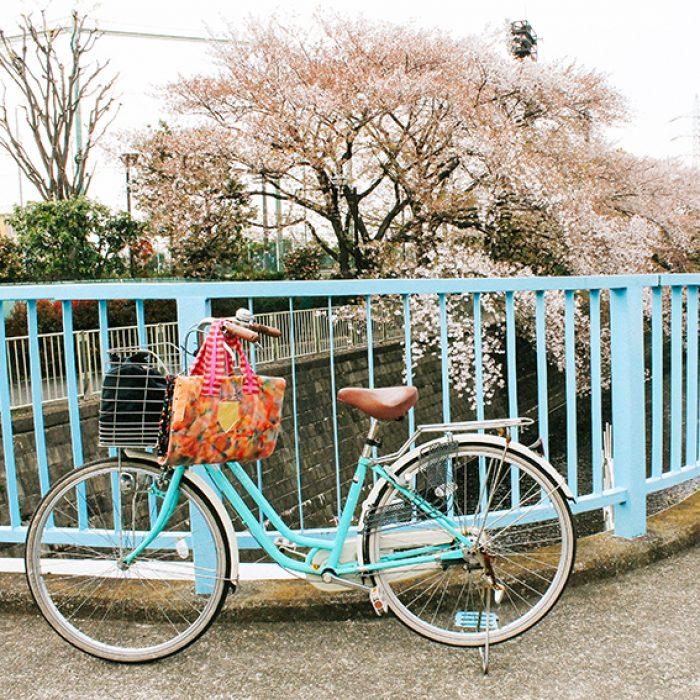 Hello  Sandwich Bike