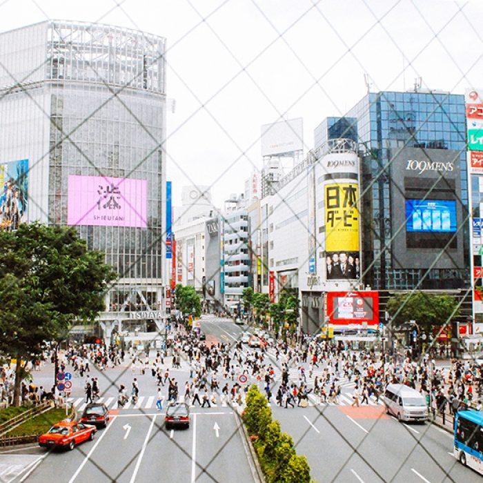 Hello  Sandwich Crossing Tokyo