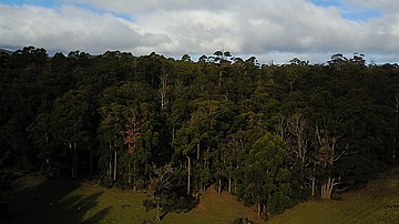 1 Cloudy Bay rd SOUTH BRUNY
