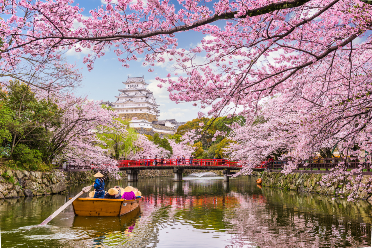 13 Night Spring Flowers and Golden Week Cruise
