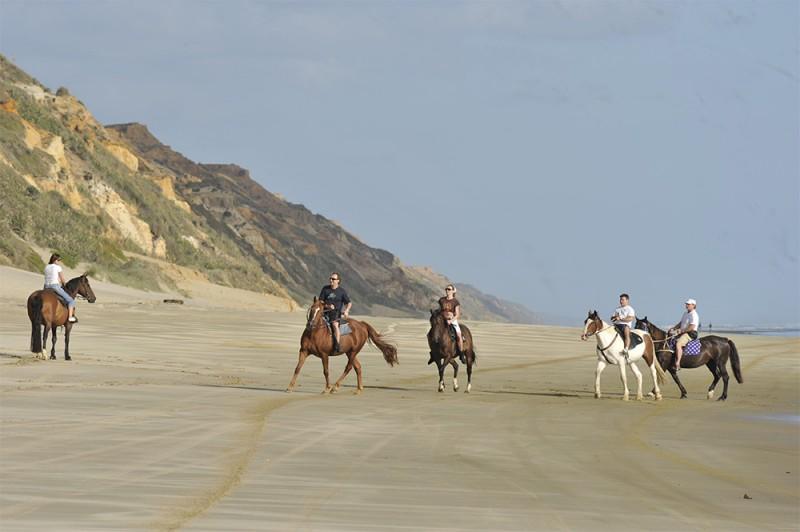 Horse trekking Ripiro Beach