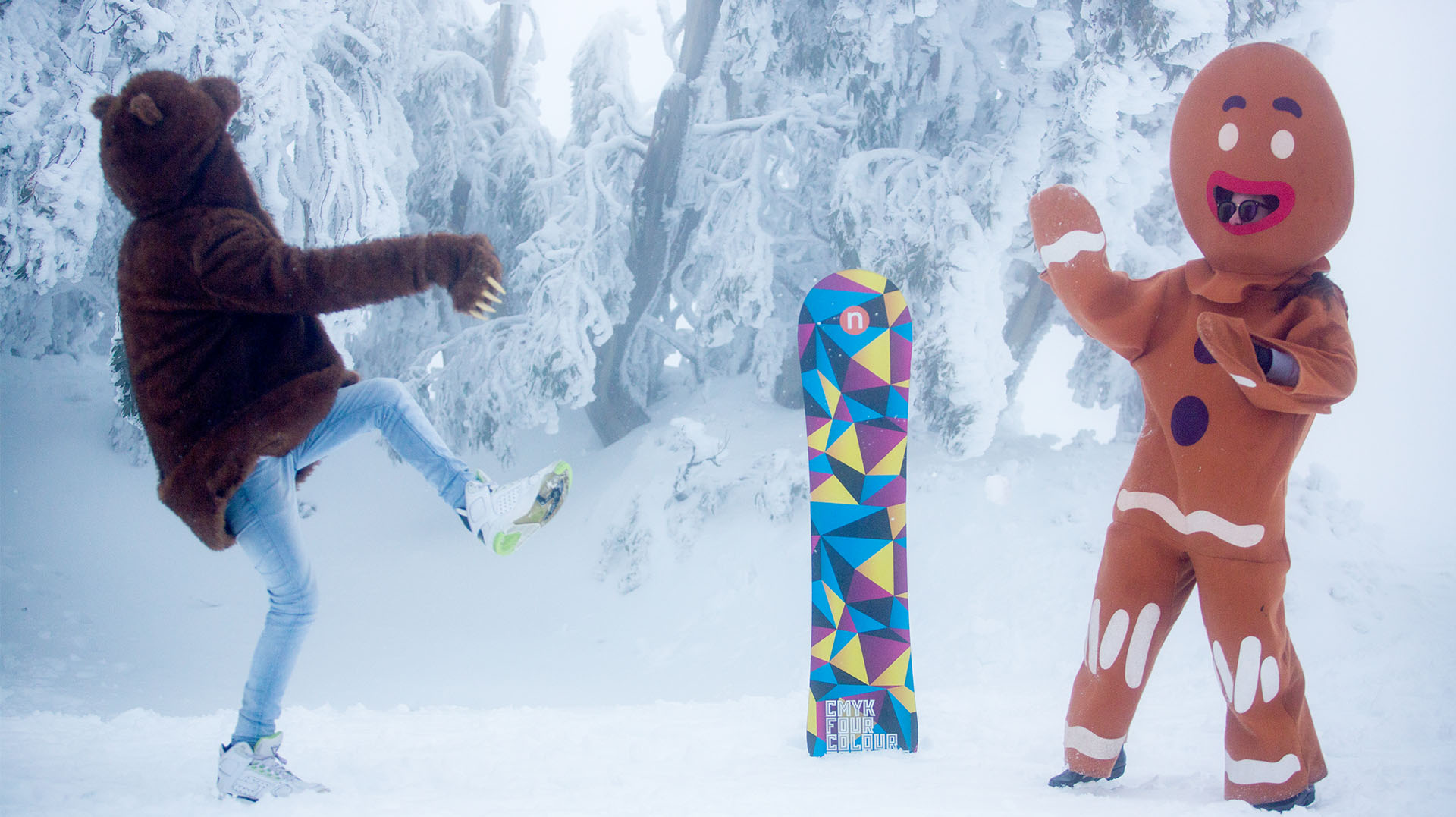 Snowboard 17