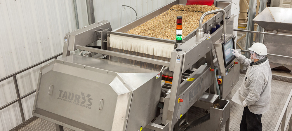 Nut company meets demand for quality with digital sorter