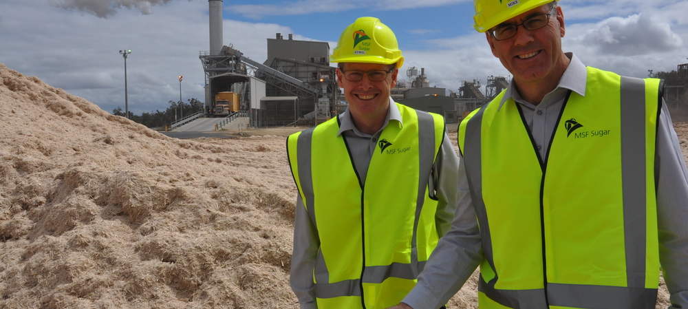 Sweet plans for renewable power in Qld