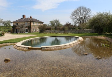 Specialised solution for natural pool
