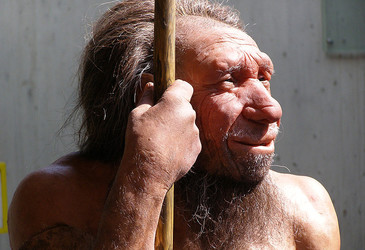 How much Neanderthal DNA is in modern humans?
