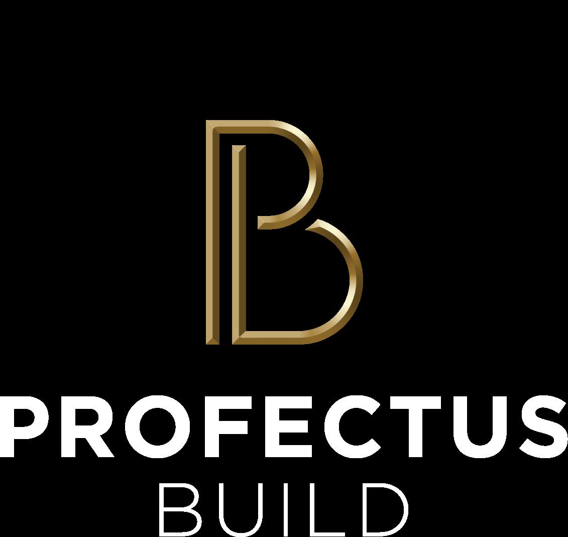 Profectus Build