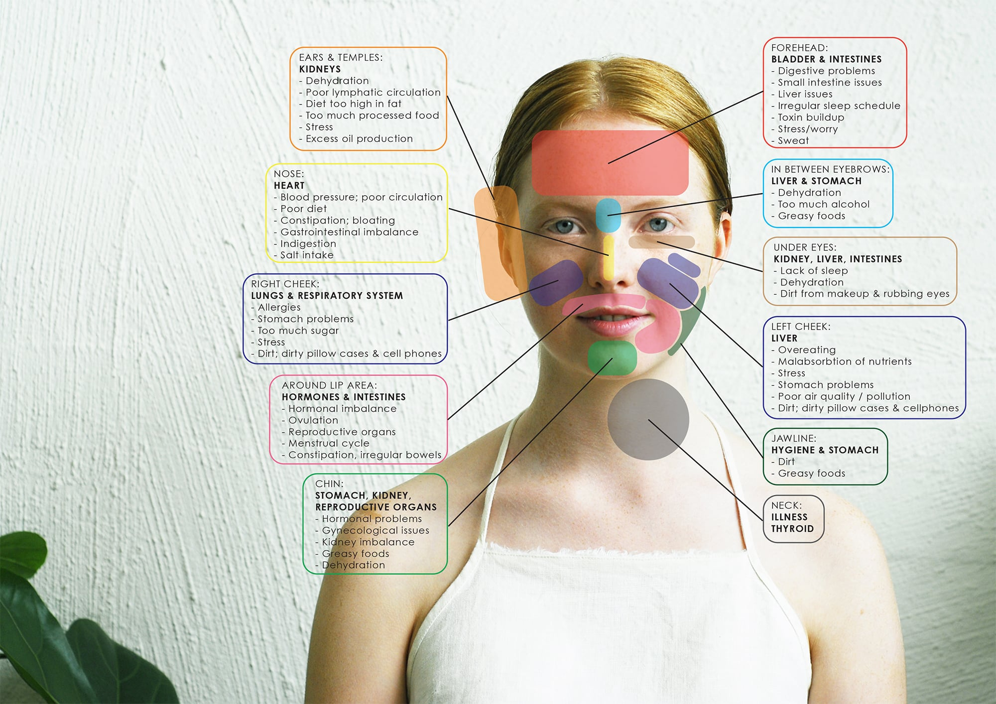 Face Map